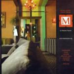 Article sur MS Architecture Interieur Magazine a Nous Lyon d'octobre 2007